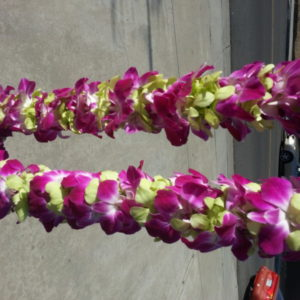 Purple And Yellow Lei