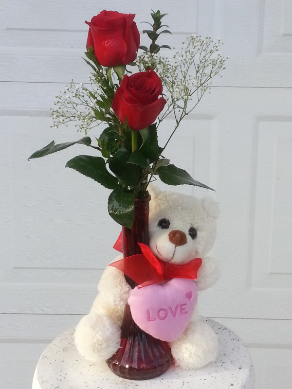 Two Red Roses With Baby\'s Breath In Red Vase With Teddy Bear | Alex ...