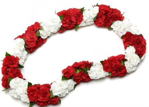 Red And White Lei